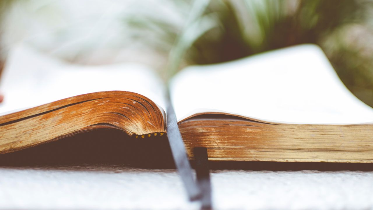 10 ideas falsas que tienen las personas acerca de la biblia