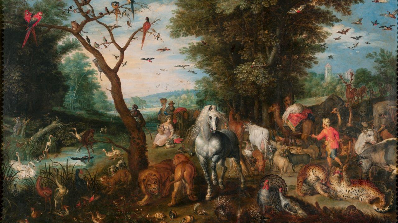 10 veces que Dios usó animales para cumplir sus propósitos