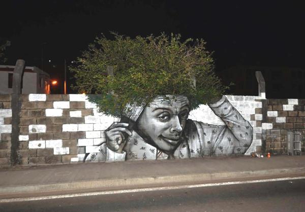 Tenemos el rostro de un hombre joven donde una planta queda sobre su cabeza  pareciendo pelo y tambien se cree que aparesca sobre el anden pero esta en la pared del frente