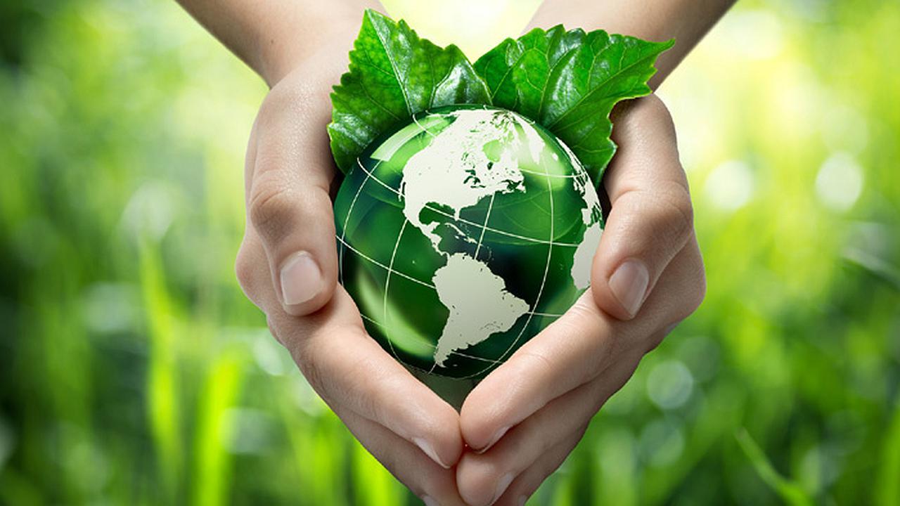 3 Aspectos para Negociar con el Medio Ambiente