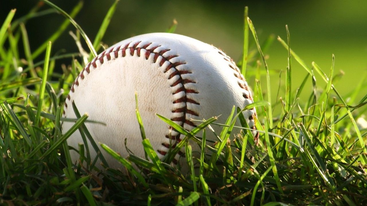 500.000 dólares por atrapar una pelota de béisbol