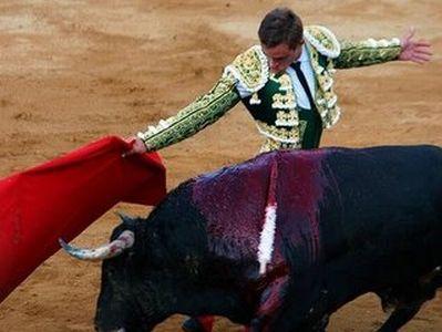 Vemos aun torero con un toro ya herido que mueve su capote