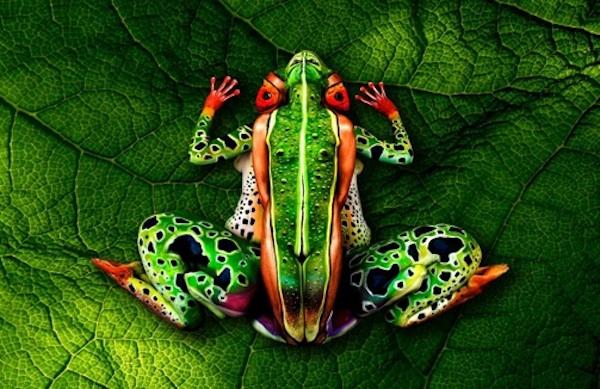 Vemos un cuerpo totalmente tatuado en color verde  y  con una enorme rana dibujada en el c uerpo