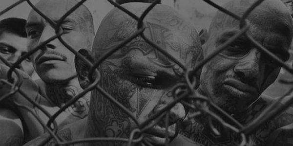 Vemos una reja y detrás unos hombres con cabezas tatuadas y sin camisa