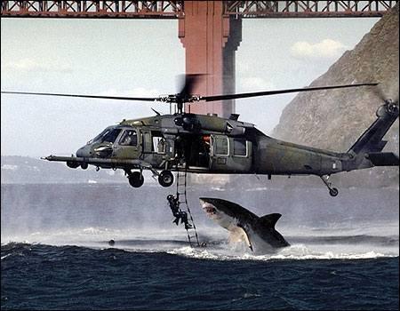 Vemos un helicóptero  rescatando a una persona que va hacer atacada por un tiburon