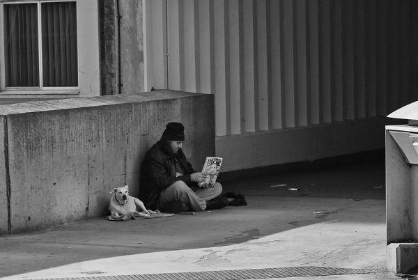 Un hombre joven sentado en el suelo con un perro leyendo la prensa