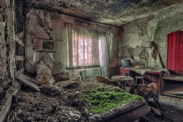 Un cuarto con las paredes muy derrocadas y una cama con demasiado musgo