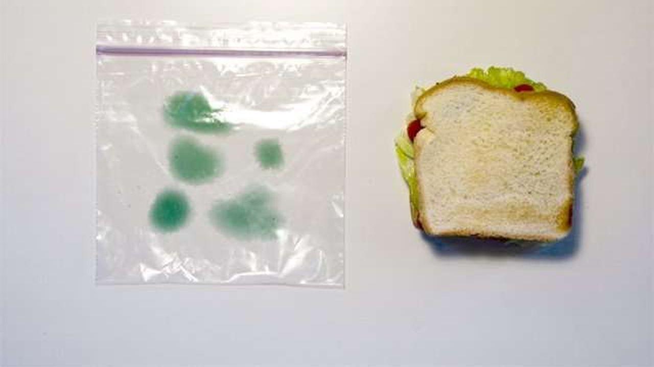Bolsa para almuerzos con mecanismo anti-robos