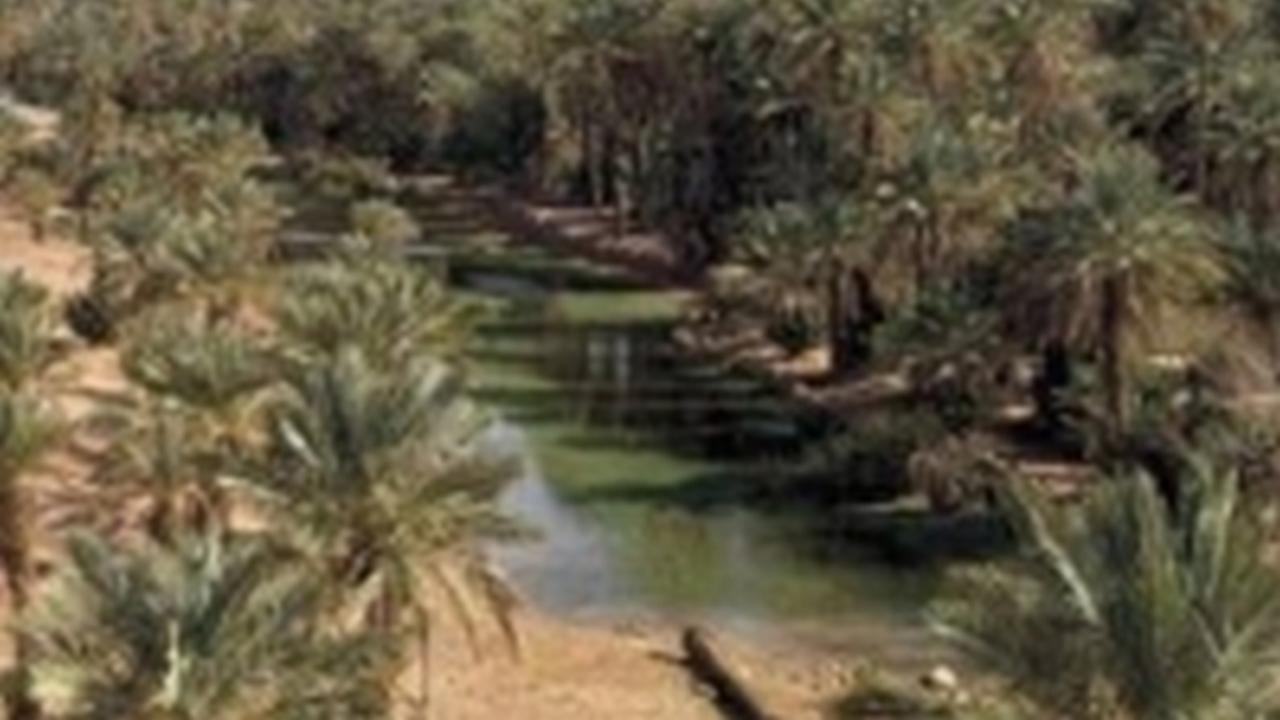 Descubren oasis gracias a Google Earth