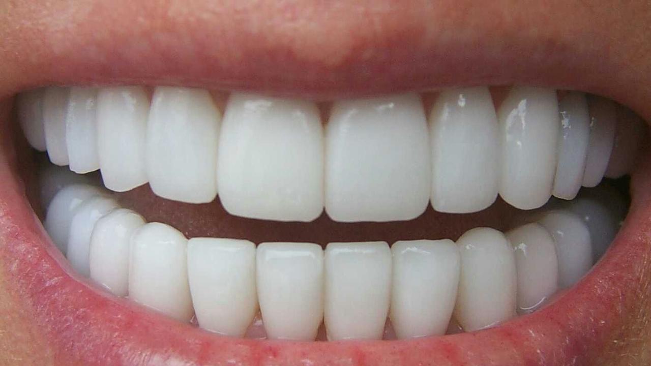 el rey sin dientes