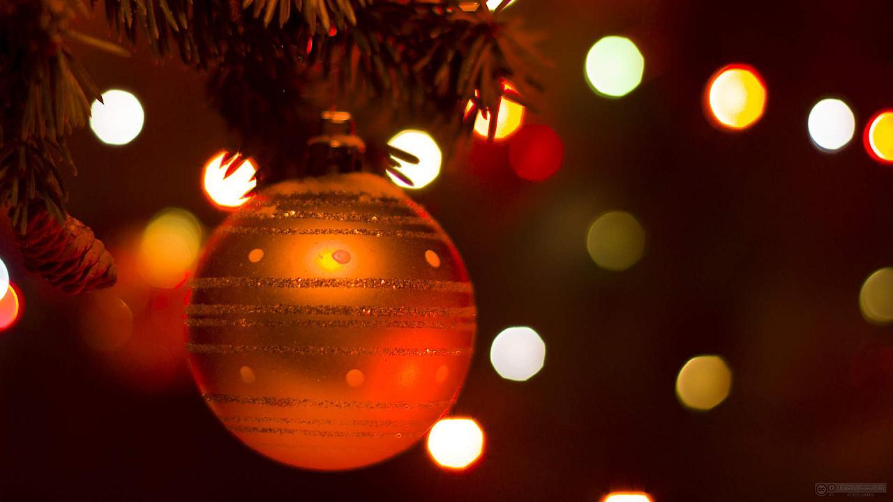 En Navidad, No Permitas...