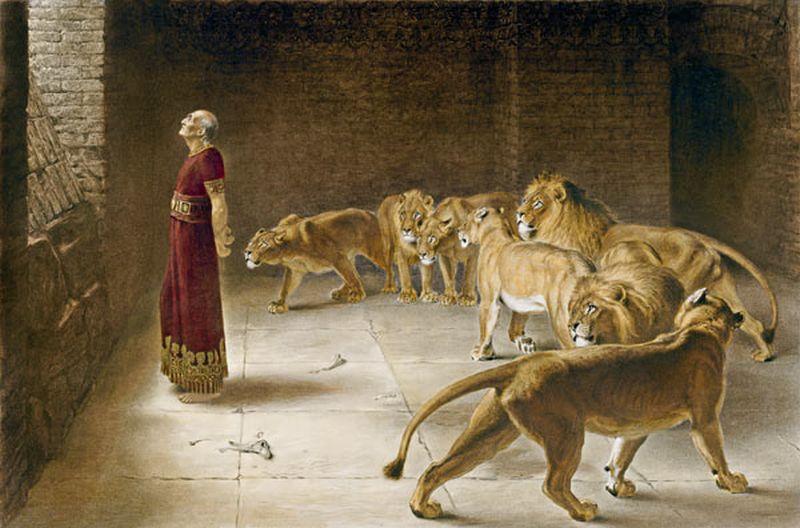 Hombre en una fosa de leones