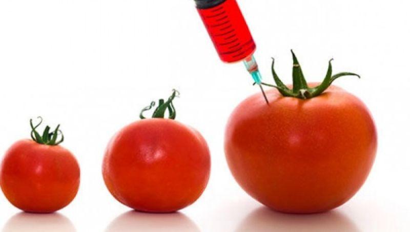 Tres tomates de diferentes tamaños, el  más grande con una jeringa