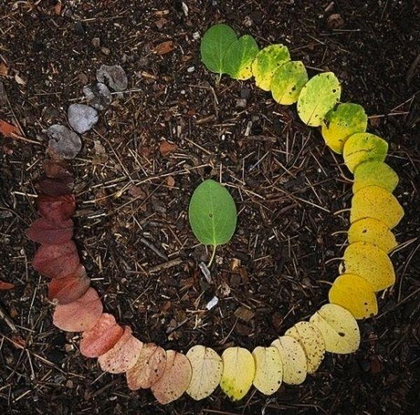 Una hoja verde en la mitad de un círculo de hojas que va desde unas verdes claras pasando por varias tonalidades de verde hasta llegar al amarillo y por ultimo al cafe