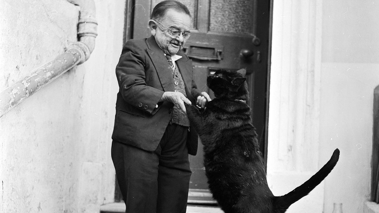 Una persona enana de pie saludando a un gato