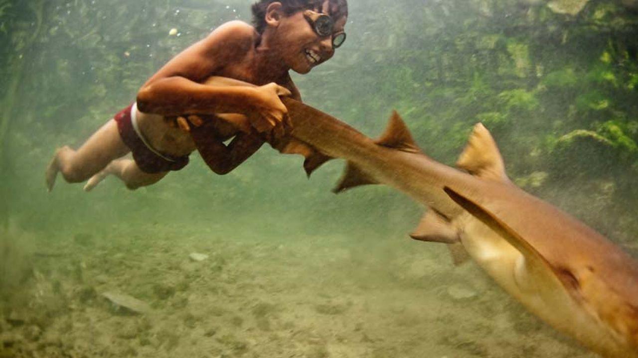 Un niño que juega con un tiburón bebé y este lo ayuda a impulsarse