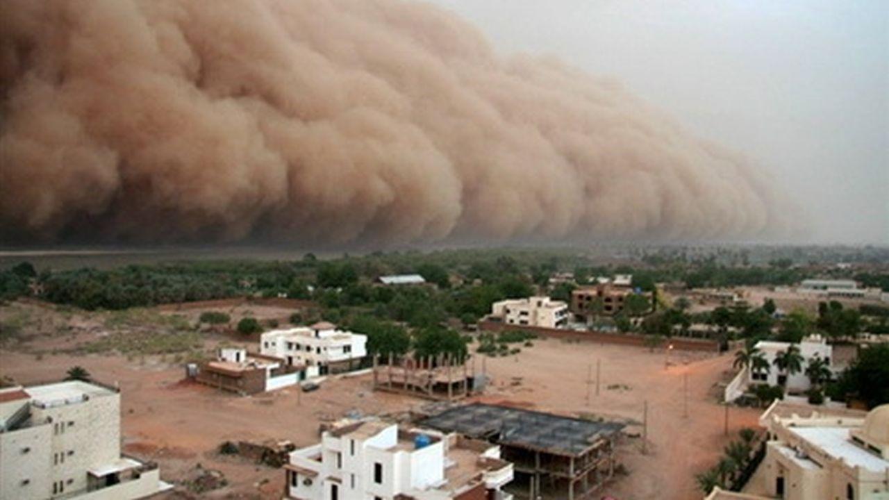 Las mejores imágenes de la AFP 2007