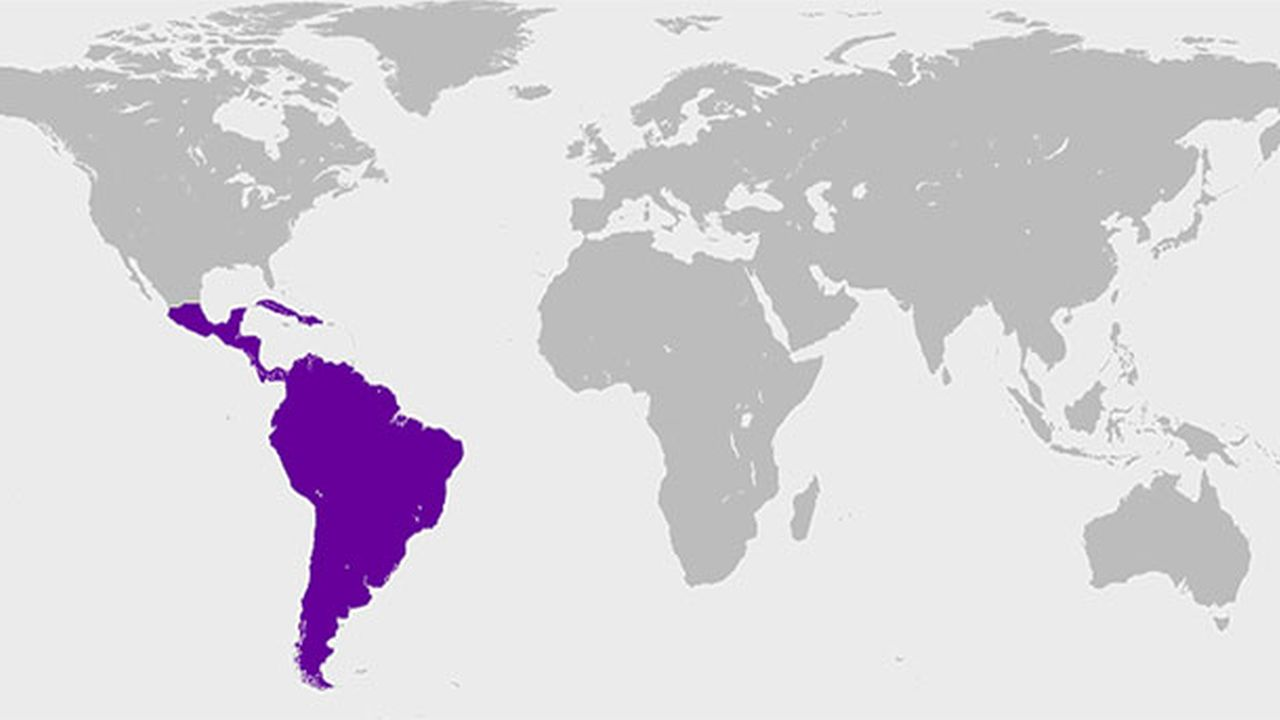 Los 10 Apellidos Más Comunes en los Países Hispanos