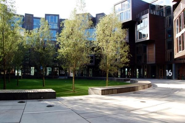Vemos el edificio como fondo y al lado los arboles y sus zonas verdes en un dia con mucha luz