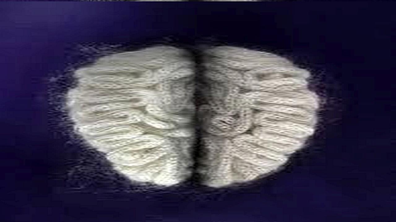 Órganos del cuerpo humano tejidos artísticamente a mano