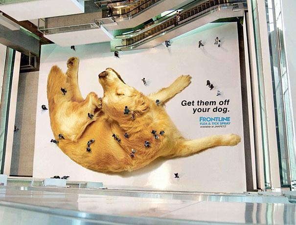 Tenemos un centro comercial y en su parte baja se ve un perro lleno de pulgas y una publicidad de un producto para quitar las plagas