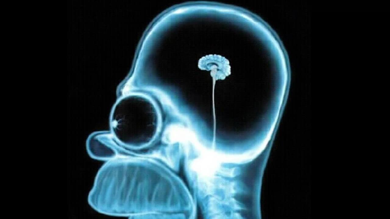 Usted solo usa el 10% de su cerebro